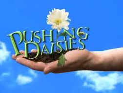 Pushing_daisies_logo