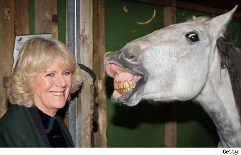 Prins Charles har antyder at hans kone Camilla kan bli kronet til dronning! thumbnail